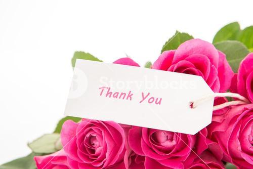 Close up of a beautiful bouquet of pink roses with a thank you card on a white background