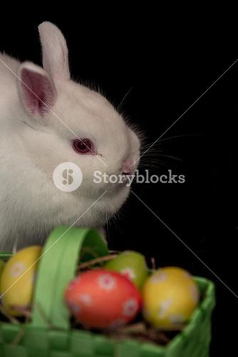 Easter bunny with green basket of eggs