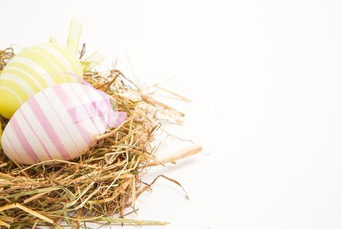 Two easter eggs in straw