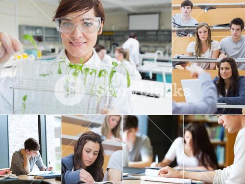 Collage of teacher and students