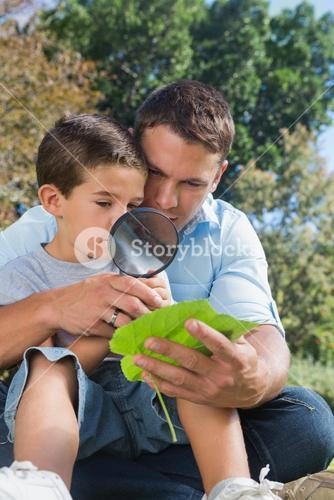 Dad and son inspecting leaf with a magnifying glass