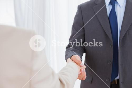 New partners shaking hands