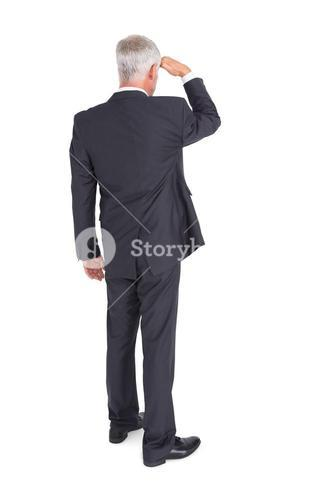 Rear view of mature businessman looking away