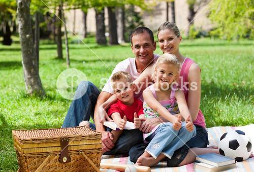 Family having a picnic smiling at the camera
