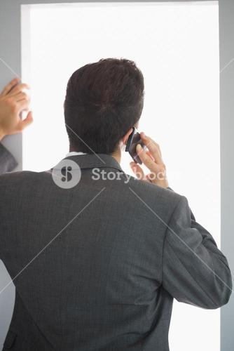 Rear view of businessman phoning