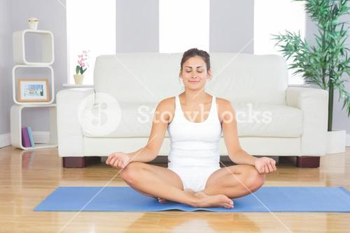 Front view of fit brunette woman relaxing in lotus position on an exercise mat