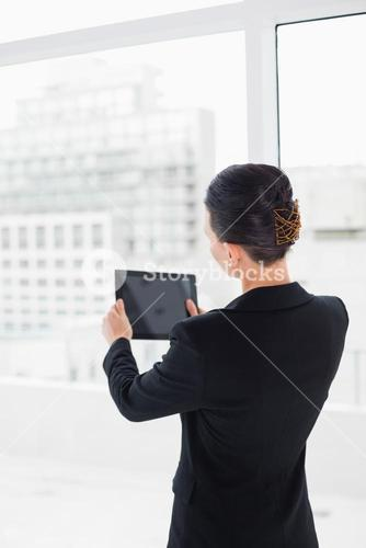 Rear view of businesswoman with tablet PC in office