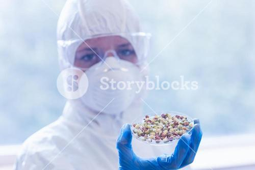 Scientist in protective suit with sprouts