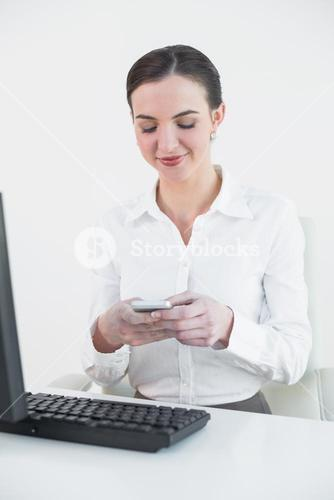 Businesswoman with mobile phone in front of computer