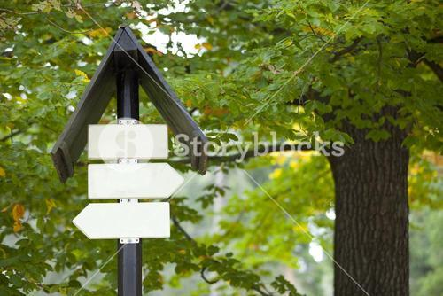Blank sign boards against trees