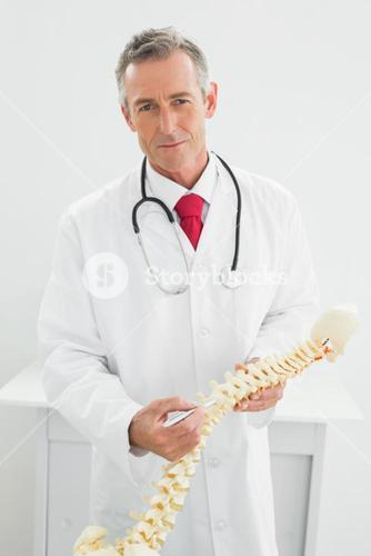 Confident doctor holding skeleton model in office