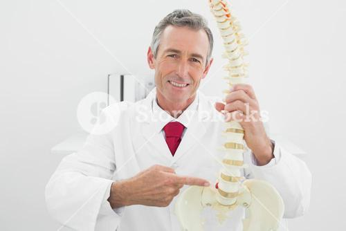 Smiling male doctor explaining spine in office