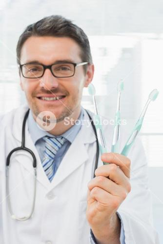Smiling doctor holding toothbrushes in office