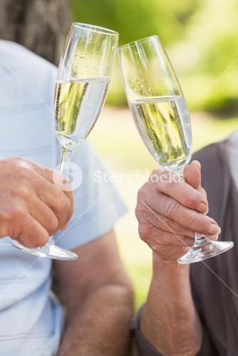 Hands toasting champagne flutes at park