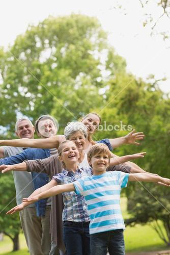 Extended family stretching hands at park