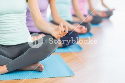 Cropped sporty women in lotus pose at fitness studio