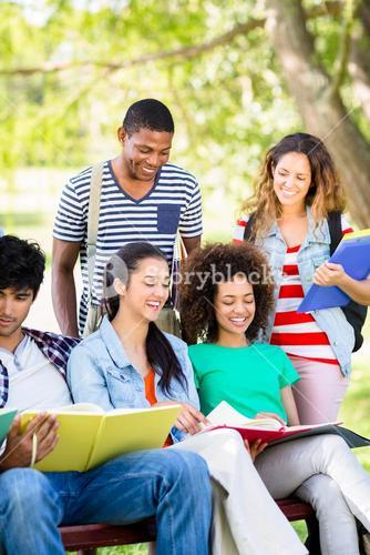 Cheerful students studying