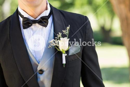 Bridegroom wearing boutonniere in garden