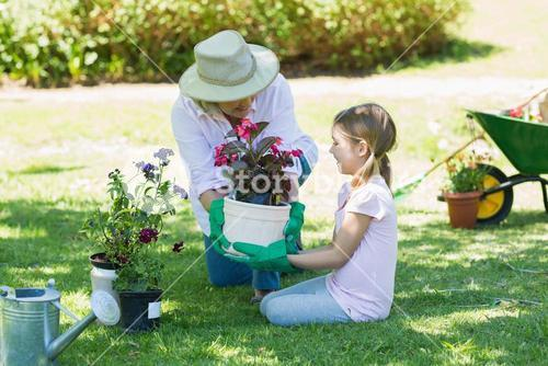 Grandmother and granddaughter engaged in gardening