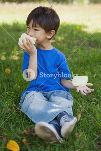 Relaxed little boy eating cotton candy at park