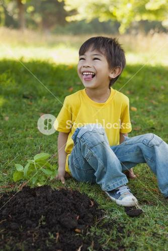 Cheerful boy besides young plant in park