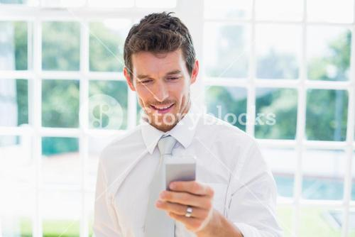 Businessman text messaging at home