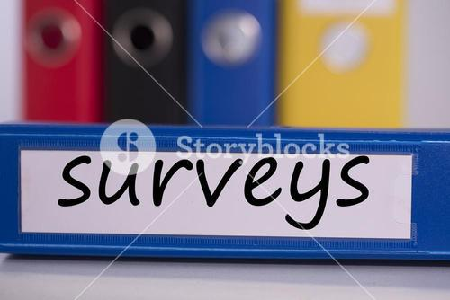 Surveys on blue business binder