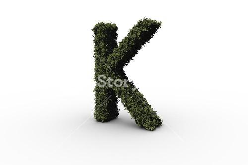 Capital letter k made of leaves