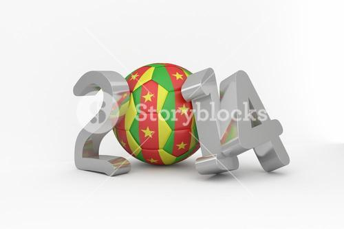 Cameroon world cup 2014