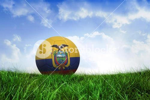 Football in ecuador colours