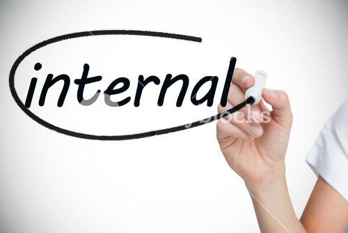 Businesswoman writing the word internal
