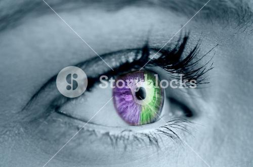 Purple and green eye on grey face