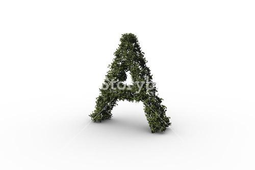 Capital a made of leaves