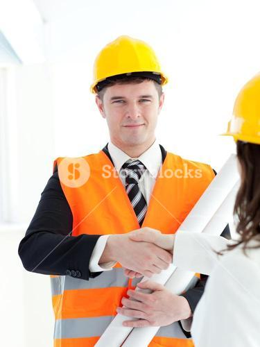 Male architect discussing with his colleague