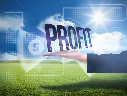 Businesswomans hand presenting the word profit