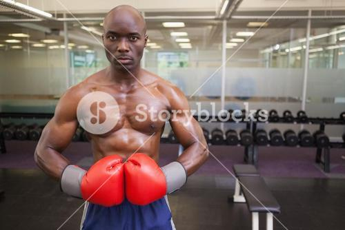 Muscular boxer in health club