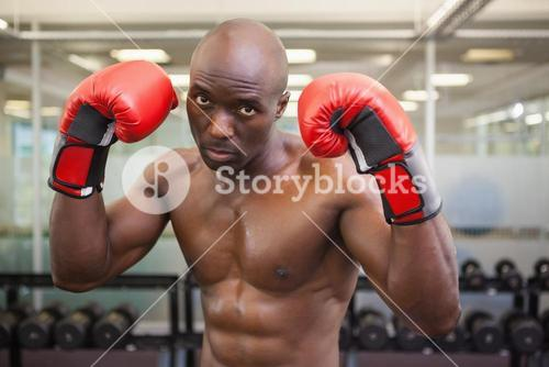 Shirtless muscular boxer in health club