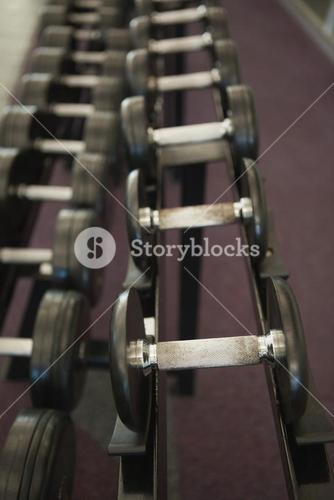 Heavy black dumbbells on rack in weights room
