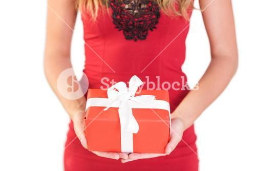 Classy woman holding a gift