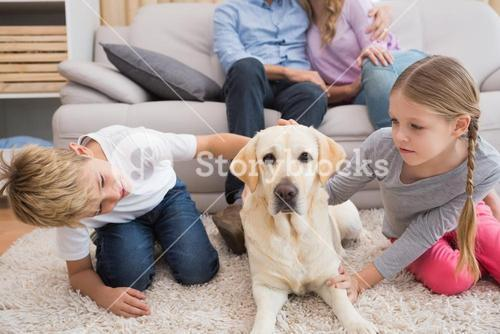 Parents watching children on rug with labrador
