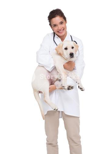 Beautiful veterinarian with a cute dog in her arms