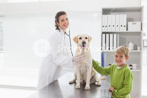 Smiling vet examining a dog with its owner