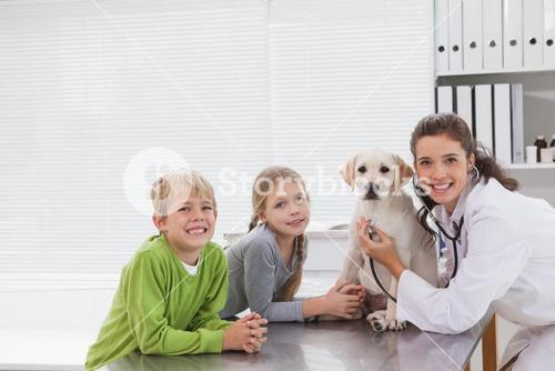 Smiling vet examining a dog with its owners