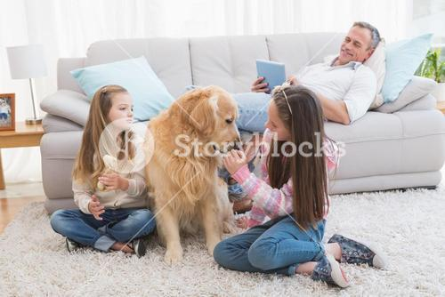 Smiling sisters petting their golden retriever on rug