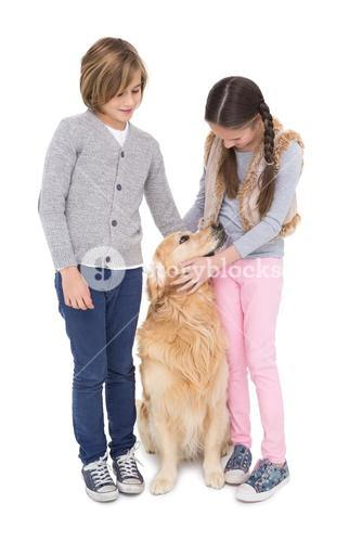 Siblings standing and petting their golden retriever