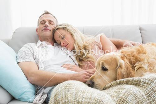 Loving couple napping on couch with their dog