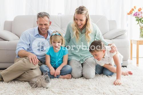 Smiling family with their rabbit on the rug