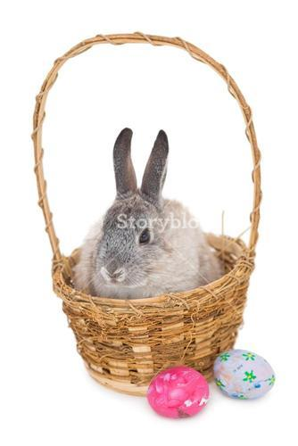 Bunny rabbit sitting on the basket with easter eggs