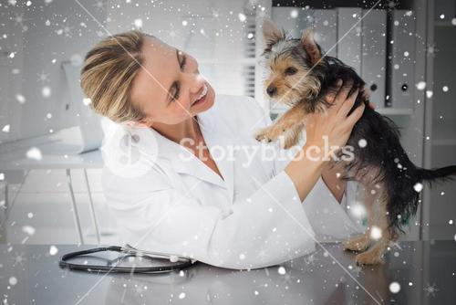 Composite image of veterinarian examining dog