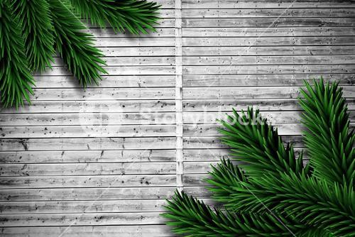 Fir branches on wooden planks